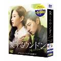 愛するウンドン 期間限定スペシャルプライスDVD-BOX<期間限定版>