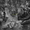 灰色の街 [2CD+ACIDMANオリジナルパッケージ花の種]<初回生産限定盤/期間限定盤>