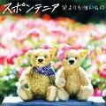 愛よりも強いもの [CD+DVD]<初回限定盤>
