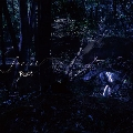 forest [CD+DVD]<初回限定盤>