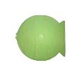 NAGAOKA 魚型CDケース Green
