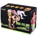 STEEL BALL RUN 文庫版 コミック 全16巻完結セット(化粧ケース入り)