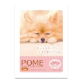 Dreaming Bath Time(入浴剤) DOG Image Bath Powder/POME