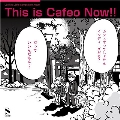 This is Cafeo Now!! ~カフェオレーベル コンピレーション アルバム~