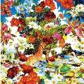 Wild Flowers  [CD+DVD]<初回生産限定盤>