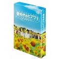 遅咲きのヒマワリ~ボクの人生、リニューアル~ DVD-BOX