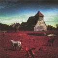 MERRY VERY BEST~白い羊 / 黒い羊~<通常盤>