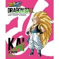 ドラゴンボール改 -魔人ブウ編- DVD BOX 4