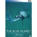 ブルー・プラネット7 TIDAL SEAS