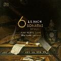 リコーダーとチェンバロによる J.S.バッハ:6つのソナタ BWV 525-BWV 530