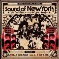 サウンド・オブ・ニューヨーク ザ・リターン・オブ・オールド・スクール・ヒップホップ