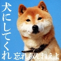 犬にしてくれ [CD+DVD]<初回盤>