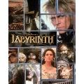 ラビリンス 魔王の迷宮 メモリアル・エディション ブルーレイ&DVDコンボ [Blu-ray Disc+DVD]