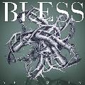 BLESS<TYPE B>