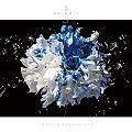 FLOWER OF ROMANCE [CD+DVD]