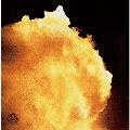 コロナ (地球限定盤) [CD+DVD]