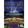 Summer Night Concert 2013
