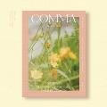 MONSTA X 2020 PHOTOBOOK (COMMA Ver.) [BOOK+DVD]
