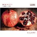 Zelenka: Sonatas ZWV.181