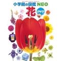 小学館の図鑑NEO 花 DVDつき [BOOK+DVD]