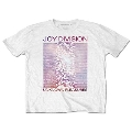 Joy Division Unknown Pleasures Gradient T-shirt/Sサイズ