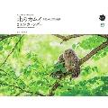 東京カメラ部×エイ出版社北のカムイ命煌めく、野生動物 カレンダー2019