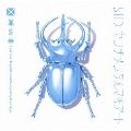 センチメンタルマキアート [CD+DVD]<初回生産限定盤B>