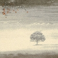 ウインド&ワザリング(静寂の嵐)<限定盤>