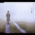 雨の旅人/ロンリーナイト・東京