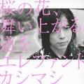 桜の花、舞い上がる道を  [CD+DVD]<初回限定盤B>