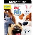 ペット [4K ULTRA HD + Blu-rayセット]