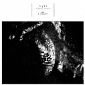 light~saw the light and shade~ [CD+DVD]