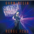 REBEL FLAG [CD+DVD]<初回生産限定盤>