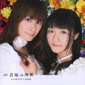 苺摘み物語 [CD+DVD]