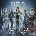 DESTINY -THE LOVERS- [CD+DVD]<初回限定盤B>