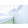 White CD