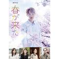 連続ドラマW 春が来た DVD-BOX