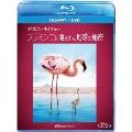 ディズニーネイチャー/フラミンゴに隠された地球の秘密 [Blu-ray Disc+DVD]