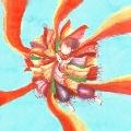 Paprika [CD+DVD+折り紙]<初回盤>