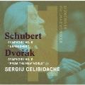 シューベルト:交響曲 第8番「未完成」 ドヴォルザーク:交響曲 第9番「新世界より」 [UHQCD]