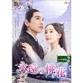 永遠の桃花~三生三世~ DVD-BOX2 DVD