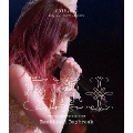 YURIKA ENDO FINAL LIVE Emotional Daybreak