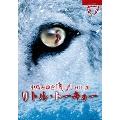 夜会 VOL.20 リトル・トーキョー Blu-ray Disc