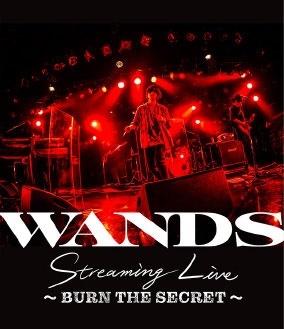 WANDS Streaming Live ~BURN THE SECRET~ Blu-ray Disc