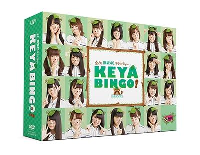 欅坂46/全力!欅坂46バラエティー KEYABINGO! DVD-BOX [VPBF-14570]