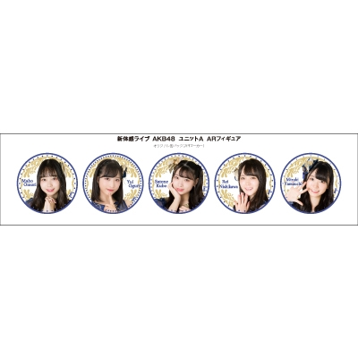 新体感ライブ AKB48 ユニットA ARフィギュア Accessories