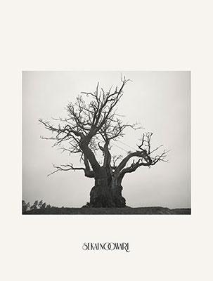 SEKAI NO OWARI 2010-2019 [2CD+DVD+ヒストリーブック]<完全生産限定プレミアムBOX> CD
