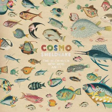 Cosmo Sheldrake/The Much Much How How and I[TRANS319CD]