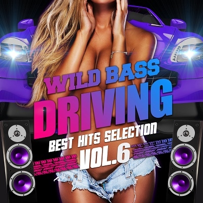 WILD BASS DRIVING -BEST HITS SELECTION- VOL.6 CD