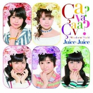 Wonderful World/Ca va ? Ca va ?(サヴァサヴァ) [CD+DVD]<初回生産限定盤D>